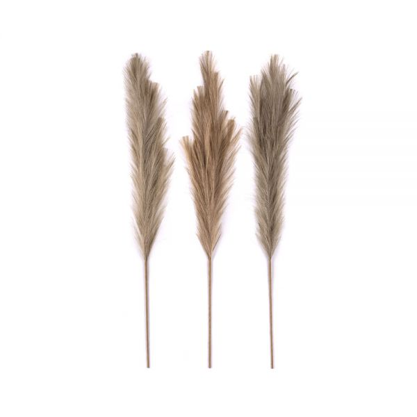 Διακοσμητικό κλαδί Pampas Grass 90 εκ., σε 3 neutral χρώματα