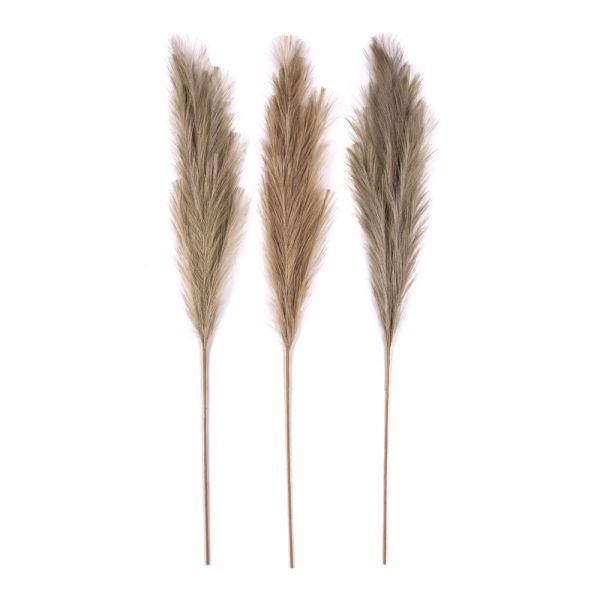 Διακοσμητικό κλαδί Pampas Grass 110 εκ., σε 3 neutral χρώματα